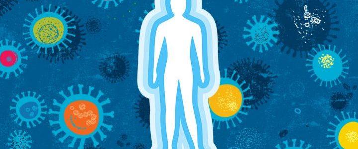 Como Manter a Imunidade Alta? Confira Aqui